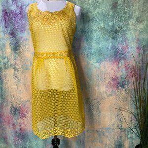 NWT 💜  Hem & Thread Unique Embroidered Dress